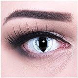 Meralens graue Kontaktlinsen, Grey Dragon mit Pflegemittel ohne Stärke, 1er Pack (1 x 2 Stück)