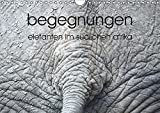 begegnungen - elefanten im südlichen afrika (Wandkalender 2019 DIN A4 quer): elefantenbeobachtung (Monatskalender, 14 Seiten ) (CALVENDO Tiere)