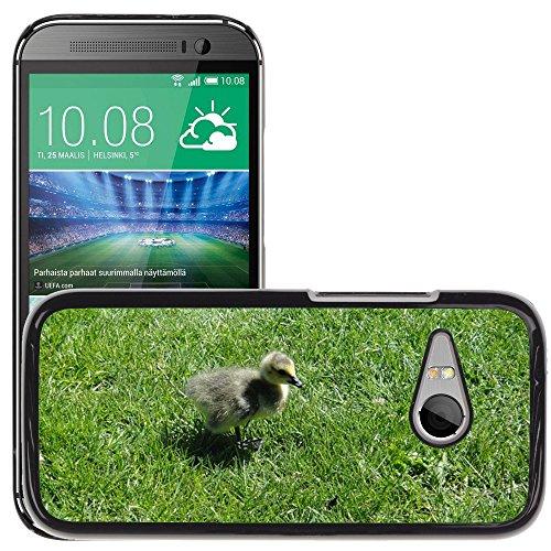 Nur Handy HOT Style Handy PC Hard Case Cover//m00139083Gosling Ente Küken Vogel Baby Young//HTC One Mini 2/M8Mini/(passt Nicht für M8)