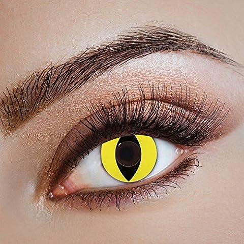 Farbige Katzenaugen Kontaktlinsen Cat Run by aricona – Deckende Jahreslinsen für dunkle und helle Augenfarben ohne Stärke, Farblinsen für Karneval, Fasching, Motto-Partys und Halloween (Cats Musical Halloween Kostüme)