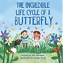 The Amazing Life Cycle of Butterflies (Look and Wonder)