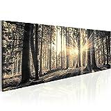 murando - Acrylglasbild Landschaft 135x45 cm - 1 Teile - Bilder Wandbild - modern - Decoration Wald Baum Natur c-B-0077-k-c