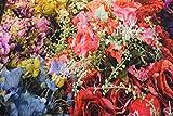 Stoff/beste Jersey-Qualität/Jersey Panel Blumen, Pflanzen digital bunt/grün
