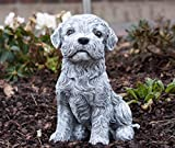 Statue chien Maltais, au gel et aux intempéries-massif en pierre …