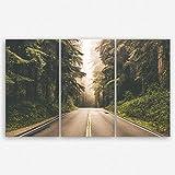 ge Bildet® hochwertiges Leinwandbild XXL Naturbilder Landschaftsbilder - Redwood Highway in Nordkalifornien, USA - Natur Wald Baum Grün - 165 x 100 cm mehrteilig ( 3 teilig )  Wanddeko Wandbild Wandbilder Wohnzimmer deko Bild   2212 U