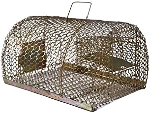 Neerjharini SHA Iron Trap/Cage for Catching Rat/Mouse/Rodent/Chipmunk, No Kill, Big