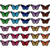 30 toppe ricamate a forma di farfalla, da stirare e cucire, per decorazioni fai da te su magliette, giacche, scarpe e borse