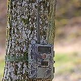 Seissiger GPRS Wildkamera