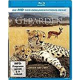 Geparden - Die HD Tierdokumentations-Reihe