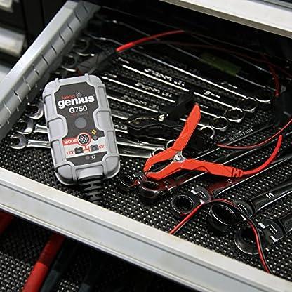 61cdlySH4VL. SS416  - NOCO Genius Cargador Inteligente de Batería