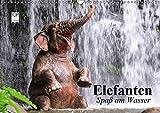 Elefanten. Spaß am Wasser (Wandkalender 2019 DIN A3 quer): Elefanten Babys beim Baden in Thailand (Geburtstagskalender, 14 Seiten ) (CALVENDO Tiere)