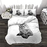 - Cat 1 135x200cm,no Filling no Sheet NTBED Housse de Couette pour Enfant Motif Chat et Chien avec Fermeture /Éclair Taille Simple 135 x 200 cm Single