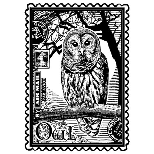 crafty-individuals-unmounted-rubber-stamp-475-inch-x-7-inch-airmail-owl