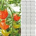 30x Tomatenspiralstab 180cm voll verzinkt Tomatenstab Tomaten Ranke Pflanzstab Stahl Profi Qualität ( 1-50 Stück ) Tomatenspiralstäbe von Thats Shopping auf Du und dein Garten