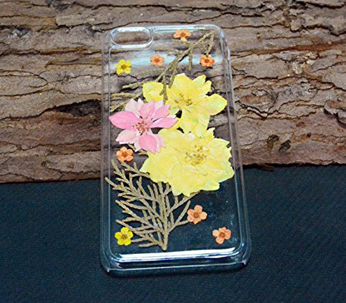 gepresst Getrocknete Blumen, Samsung Galaxy S4Note 4., plastik, Dried Flower e, iPhone 5c Dried Flower b