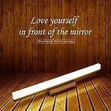 Lampada LED in acciaio inox di alta qualità per lo specchio, impermeabile, antiappannamento, per il bagno, lampada moderna, semplice lampada da parete, Warm Light, 19.3*2.8*1.6 in / 12W 12.00 watts