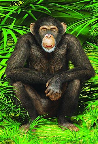gift-trenz-chimp-motion-magnet