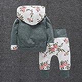 Kleinkind Babykleidung Set CLOOM Baby Jungen Mädchen Vintage langarm Hoodie Sweatshirt Elegant Blumenmuster Tops + Straight Leg stretch lang Hose 2pc Outfits (70, Grau) Vergleich