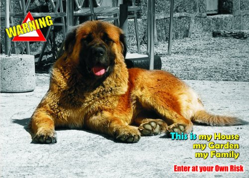 attention-beware-fun-sign-dog-estrela-mountain-dog-for-your-home-or-house-sf1409-size-a4