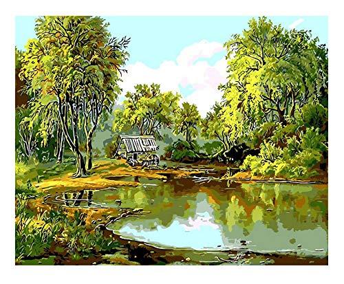 Menddy Green Spring Landscape Ölgemälde Pond Willow Digital Drawing Coloring Einzigartiges Geschenk Wohnzimmer Dekor No Frame 40x50cm - Willow Pond