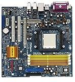 Asrock AM2NF6G-VSTA - Placa base (4 GB, AMD, Socket AM2, 1000 MHz, 7.1, Realtek ALC888)