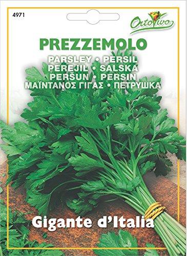 Hortus 43PRE4971 Maxi Busta Ortovivo Prezzemolo Gigante d'Italia, 12x0.2x16.5 cm