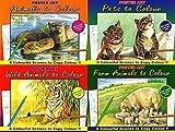 Lot de 4 grands livres de coloriage peinture & les animaux sauvages, les animaux de ferme, animaux, & 1015 animaux