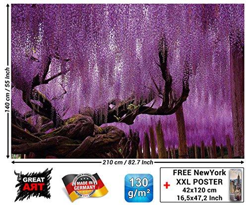 GREAT ART Fototapete - Wisteria - Wandbild Dekoration Lila Blauregen Schmetterlingsblütler Baum mystischer Wald Allee Natur I Bild Wallpaper Foto-Tapete Wandtapete Poster Wanddeko (210 x 140 cm)