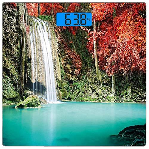 Digitale Präzisionswaage für das Körpergewicht Platz Wasserfall Ultra dünne ausgeglichenes Glas-Badezimmerwaage-genaue Gewichts-Maße,Einzelner Wasserfall in der Ecke des tiefen Waldes mit Eichen im sc -