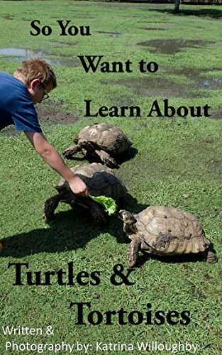 So You Want To Learn About Turtles & Tortoises por Katrina Willoughby