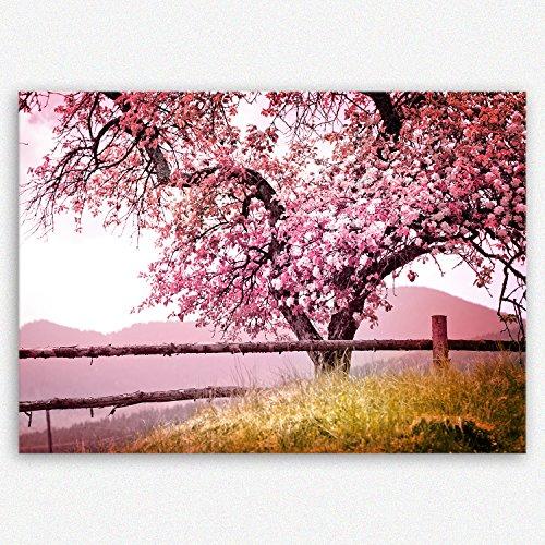 ge Bildet Hochwertiges Leinwandbild XXL Naturbilder Landschaftsbilder - Frühlingsbaum - Natur Baum Rosa Pink - 100 x 70 cm Einteilig |...