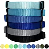 Blueberry Pet Hundehalsband Klassisch Einfarbig 1 cm XS Basic Polyester Nylon Hundehalsband für Welpen Langlebig - Flint Grau