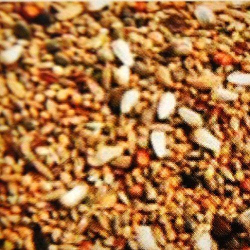 5 kg Agapornidenfutter, Vogelfutter für Zwergpapagein, Futter