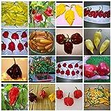 Chilisamen-Mix (Raritäten): 50 Samen -Seltene Sorten- Von Samenchilishop
