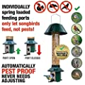 Roamwild Squirrel Proof Wild Bird Feeder PestOff by Roamwild