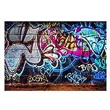 Photography Background Studio Photo Graffiti Wall Backdrop , 5x3Ft