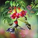 MXJSUA DIY 5D Diamond Painting Kits Full drill rotonda strass ricamo PICTURES Arts Craft for home Wall Decor Gift colibrì Picking Nettare 12x 12IN