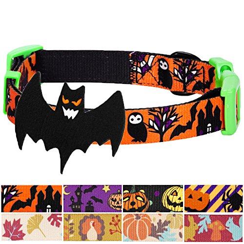 ags-Halsbänder 2cm M Halloween Geheimnisvolle Tarnung Klassisches Designer Hundehalsband mit Abnehmbarer Deko (Halloween-ideen Treffen)