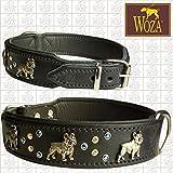Woza Premium HUNDEHALSBAND FRANZÖSISCHE Bulldogge Vegas 3,3/47CM Vollleder RINDNAPPA Collar