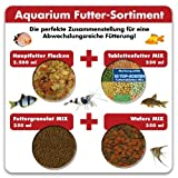 Aquarium Futter-Sortiment 3.250 ml