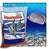 Farbkies Feuerrot Aquarium Deko Kies Aquariengrund Aquariumkies Bodengrund Körnung 2-4 mm 10 kg (2 x 5 kg Beutel)