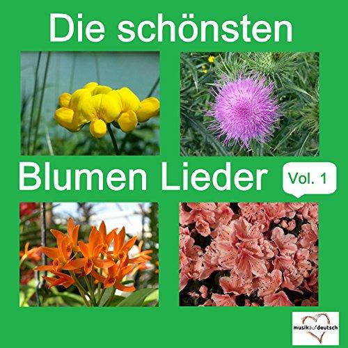 Morgen blühen neue Blumen (Morgen Blume)