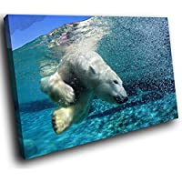 A123 Blue White Polar Bear Swimming Funky Animal Canvas Wall Art Picture Prints
