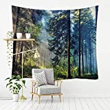 MSHTXQ Tapestry Deep Forest Series Printing Home Living Room Bedroom Polyester Fiber Tapestry Wall Hanging Beach Towel Canvas Beach Blanket 230X180CM