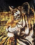 Kuscheldecke Tagesdecke Wendedecke Motiv Tiger - schwarz 200x160cm