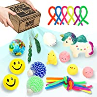LESONG Sensory Fidget Toys Set 19 Pcs, with Stress Ball, Stretchy String, Soybean Squeeze & Mini Mesh Animals for Kids and Adults with Anxiety Relief, Autism & ADHD