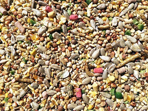 Pet Performance Garden Feast Wild Bird All Season Mix With Mealworms & Suet Pellets 12.55kg