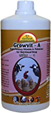 Growel Growvit A Vitamin Supplement for Poultry, Pigeon, Birds, Cattle and Farm Animals (500ml)