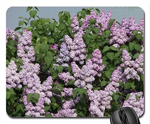 lilac-shrub-mouse-pad-mousepad-flowers-mouse-pad