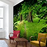Waldtapete - Vliestapete Premium - Verborgene Lichtung - Fototapete Wald Quadrat Vlies Tapete Wandtapete Wandbild Foto 3D Fototapete, Größe HxB: 336cm x 336cm